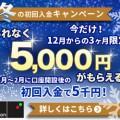 300x250 (3)